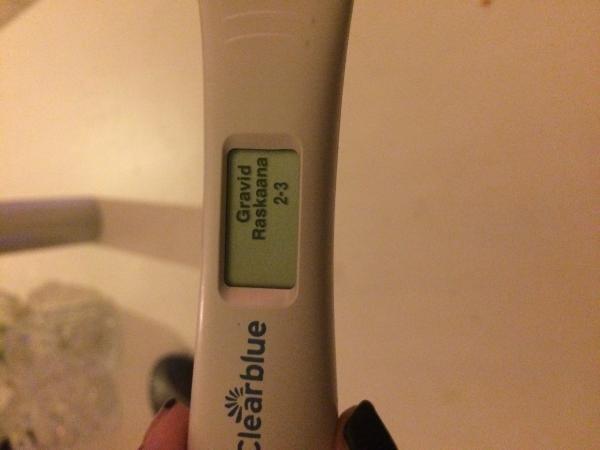 gravid fast mens