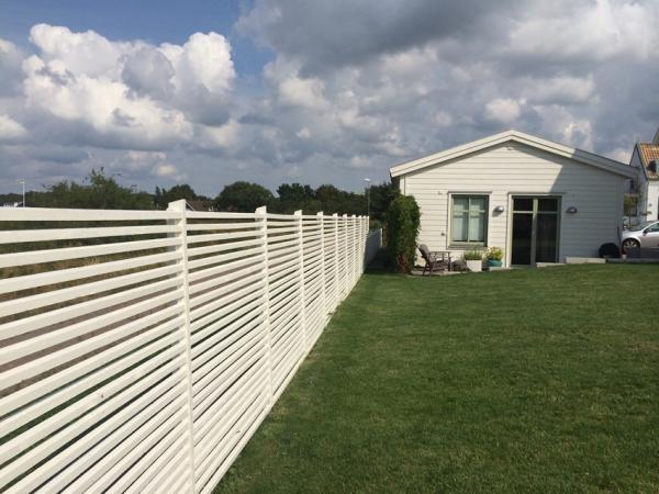 kattaggresiv hund-lös på tomten med staket?